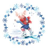 Pig in sweater on skates. 2019 Chinese New Year of the Pig. Christmas greeting card. Watercolor snowflakes round frame. royalty free illustration