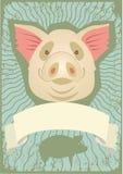 Pig symbol Stock Photos