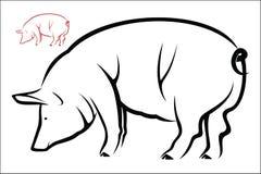Pig symbol Stock Images
