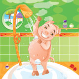 Pig taking a morning shower Royalty Free Stock Image