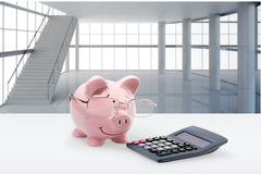 Pig, Tax, Financial Advisor Royalty Free Stock Images
