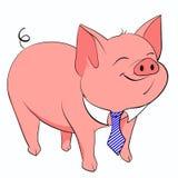Pig tie Royalty Free Stock Photo