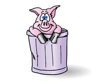 Pig in the trash can Royalty Free Stock Image