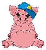 Pig in trendy cap Royalty Free Stock Image