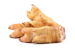 Pig trotter Stock Image