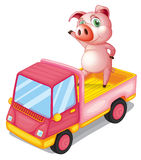 A pig in the truck. Illustration of a pig in the truck on a white background Stock Image
