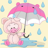 Pig with umbrella Royalty Free Stock Image