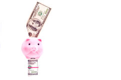 Pig with usa dollars. A pink pig stands on the dollars isolated on white royalty free stock photo