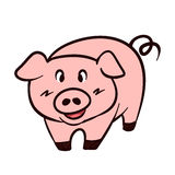 Pig vector cartoon Royalty Free Stock Photography