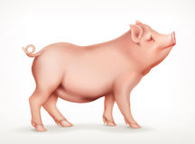 Pig, vector icon Stock Photography