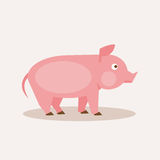 Pig. Vector Illustration Royalty Free Stock Image