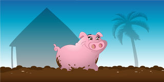Pig wallowing mud Royalty Free Stock Photography