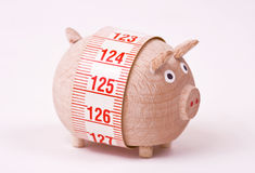 Pig - weightloss, diet Stock Photos