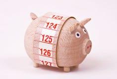 Pig - weightloss, diet Stock Photos