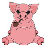 Pig wit pipe Stock Photography