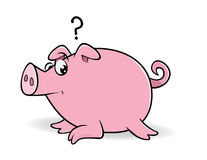 Pig wondering Stock Photo