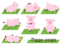 Pig yoga. Cute pig in different yoga poses Royalty Free Stock Images