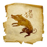Pig Zodiac icon Stock Images