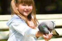 Pigeon alimentant de fille Images libres de droits