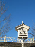 Pigeon on a Birdhouse. Pigeon sitting on a birdhouse, portrait with copyspace Stock Photography