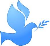 Pigeon blanc avec la branche d'olivier illustration libre de droits