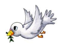 Pigeon blanc saint d'aquarelle illustration de vecteur