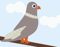 A Pigeon on a Branch. A pigeon is perched on a branch Royalty Free Illustration