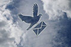 pigeon de lettre photos libres de droits