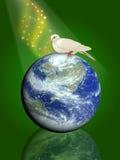 pigeon de paix d'oiseau Photos stock