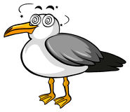 Pigeon with dizzy face Stock Photography