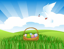 Pigeon and an easter basket Royalty Free Stock Image