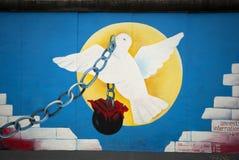 Pigeon et réseau Photo libre de droits