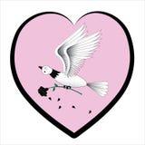 Pigeon et une rose. Image libre de droits