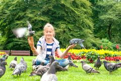 Pigeon Feeding and Balancing on smiling girl`s hands. Summertime stock image