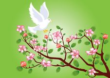 Pigeon flying to a flowering cherry branch. Announcing spring vector illustration