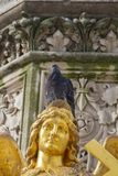 pigeon on gold statue royalty free stock photo