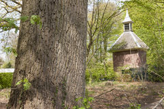 Pigeon house in forest scenery Royalty Free Stock Image