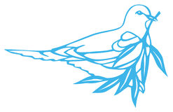 Pigeon and olive branch Stock Images