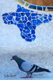 Pigeon in Park Guell. Pigeon standing in front of mosaic in Park Guell in Barcelona, Spain Stock Images