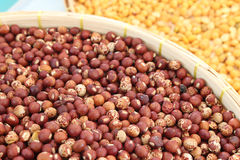 Pigeon pea for background Stock Photo
