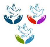 Pigeon of peace flying from open hands icon. Charity, ecology, natural environment vector logo or symbol Stock Images