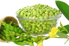 Pigeon Peas With Leaves Royalty Free Stock Images