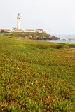 Pigeon Point Light Station Lighthouse Royalty Free Stock Photo