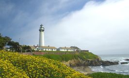 Pigeon Point Lighthouse. Spring flowers frame Pigeon Point Lighthouse on Central California coast Stock Images