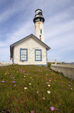 Pigeon Point Lighthouse with blue sky Royalty Free Stock Photos