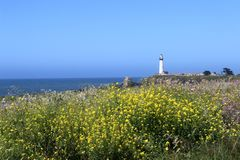 Pigeon Point Lighthouse, CA. stock photo