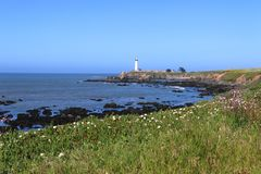 Pigeon Point Lighthouse, California. Stock Image
