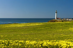 Pigeon Point Lighthouse Royalty Free Stock Images