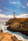 Pigeon Point Lighthouse in Pescadero beach, California  Stock Photography