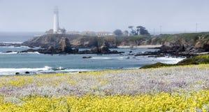 Pigeon Point Lighthouse, Pescadero, California Royalty Free Stock Photo
